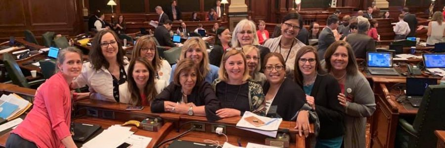 Reproductive Health Act Passes Illinois Legislature and Moves to the Governor's Desk