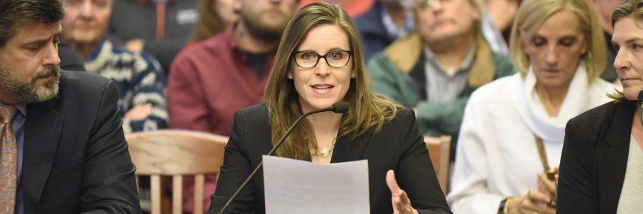 Rep. Ann Williams Passes Discrimination, Harassment, and Ethics Omnibus