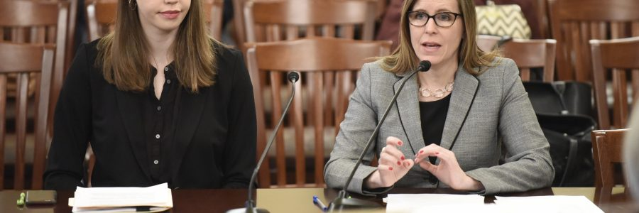 Rep. Ann Williams' Legislation on Teaching Comprehensive Consent Becomes Law